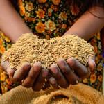 Empoderar a la mujer rural disminuye la pobreza